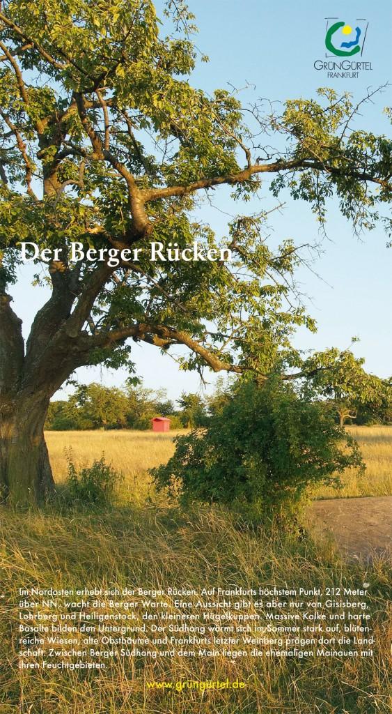 GG_DerBergerRuecken