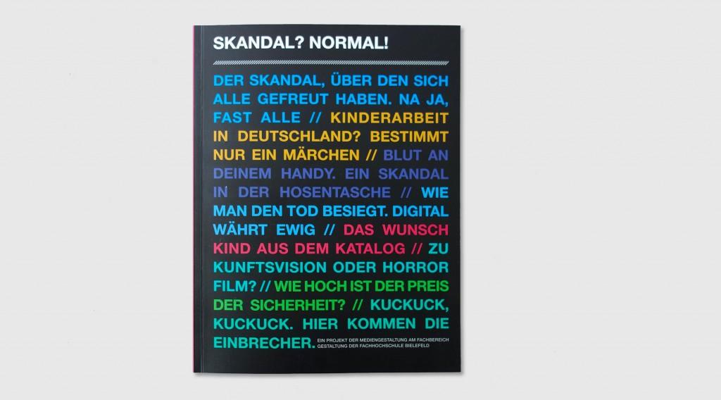 Skandal_Titel_grau_lang